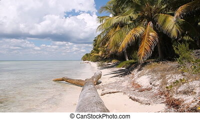 Desert Island Beach. - View of coast of untouched Caribbean...