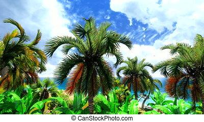 Hawaiian paradise - Tropical paradise