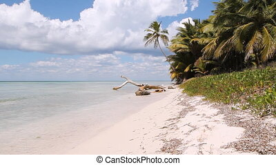 Desert Island Beach. Wide. - View of coast of untouched...