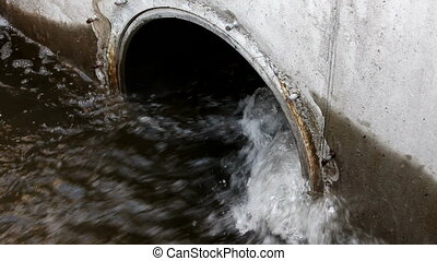Sewer - Water in the drain