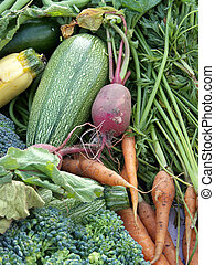 Mixed Vegetables - Selection of various organic vegetables,...