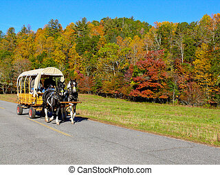 Horse drawn wagon and Fall foliage - A vintage wagon takes...