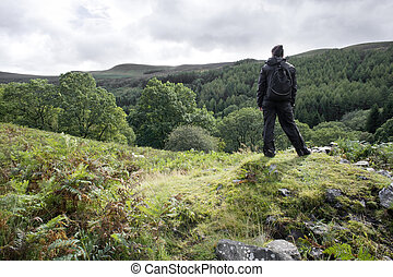 looking at view - woman looking at valley view in Welsh...