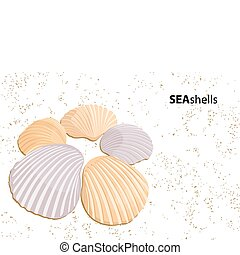 Vector seashells - Vector background some seashells on sand...