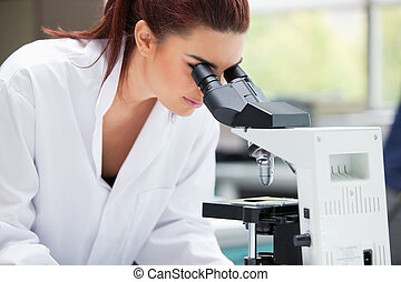 Scientist looking into a microscope in a laboratory