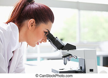 Brunette looking into a microscope
