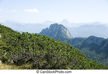 Carinthia highland - mountains and shrubbery in the...
