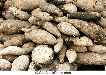 Chinese yam background
