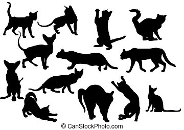 Silhouettes Of Cats - illustration of various cats...