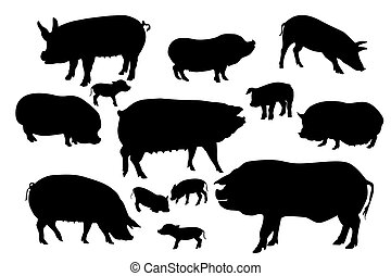 Collection of pigs and boars silhouettes
