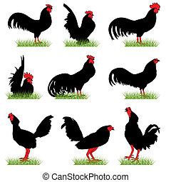 Roosters silhouettes set