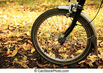 Bicycle in the park - Bicycle in the Richmond Park, Autumn,...