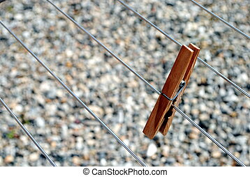 clothes peg standing on the line