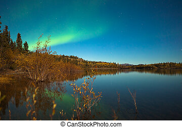 Northern lights and fall colors at calm lake - Northern...