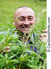 man with glasses in the bush of hemp