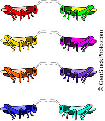Grasshopper - eight different color varieties of a single...