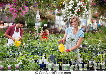 Workers at greenhouse - Workers watering the plants at...