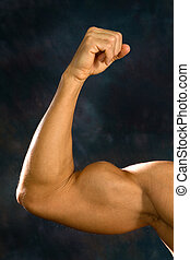 Man Biceps Muscles - Man shows off his biceps brachii...