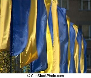 Flags - Trembling blue and yellow flags