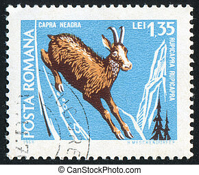 deer - ROMANIA - CIRCA 1968: stamp printed by Romania, shows...