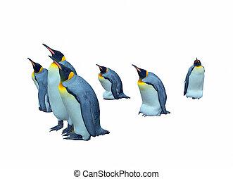 Colony emperor penguins cutout