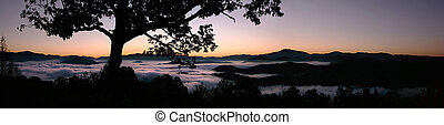 Smoky Mountain Sunrise Panorama - Panorama of a fog filled...