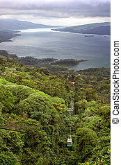 Tropical Rain Forest Canopy Tram - A tram tour through the...