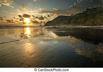 Costa Rica Jungle Beach - A jungle rain forest beach in...