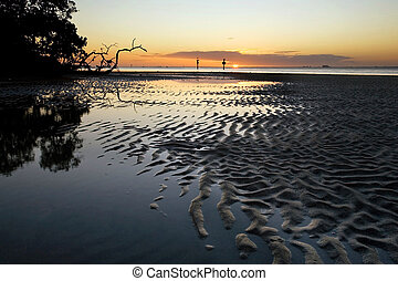 Tidal Flats in South Florida