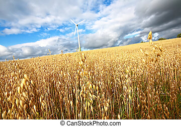 Scenic rural landscape with a windmill