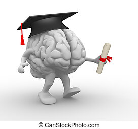Brain with graduation cap and diploma 3d render illustration...