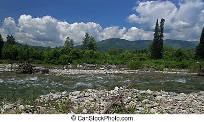 Mountain River - River in the foothills of the Altai