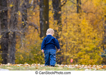Boy walking away on fall day