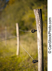 Electric fence - Close up of electric fence in rural autumn...