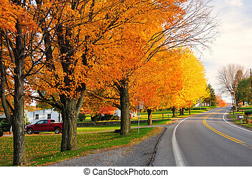 Scenic Road in fall