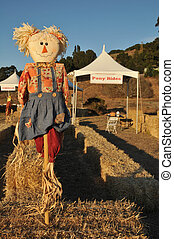 Scarecrow on a pole in bail of hay - Scarecrow in a field...