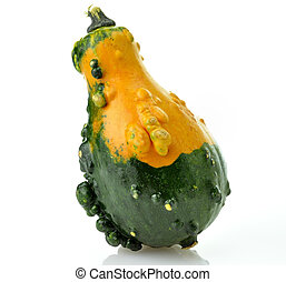 Gourd - Mini Yellow And Green Pumpkin On White Background