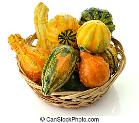 Gourds - Small Colorful Gourds Collection In A Basket