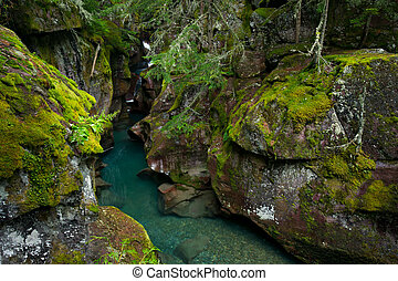 Avalanche Creek Gorge, Glacier National Park, Montana -...