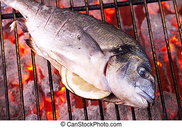 bream on a charcoal grill