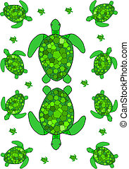 Turtle - a page of different sized green sea turtles