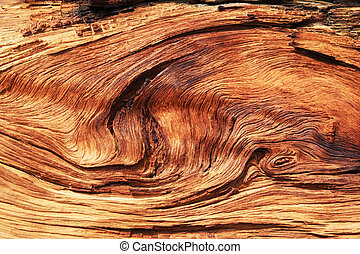 twisted wood grain - twisted and eroded woodgrain background...