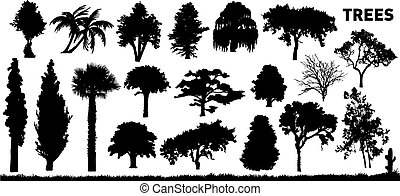 trees - vector set of various trees