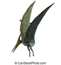 Pteranodon Dinosaur Landing. From the Late Cretaceous...