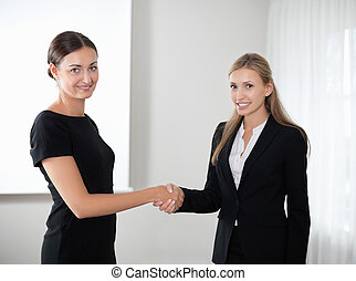 Business women shaking hands making a deal - Portrait of...