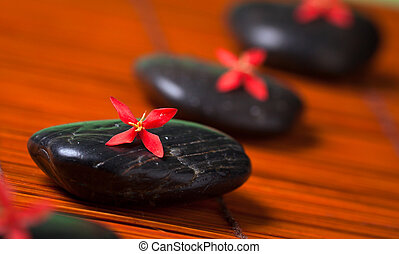 Row of black rocks with red flowers