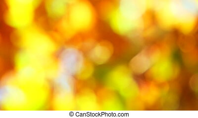beautiful golden abstraction Strong defocusing the camera