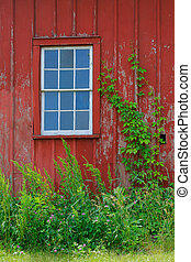 Window of Old Bard House - Window of Old Abandoned Red Bard...