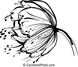 fehér, virág, rügy