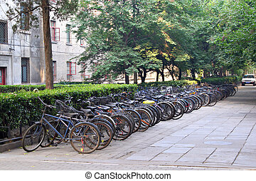 row of bikes parked behind apartment building, Beijing,...